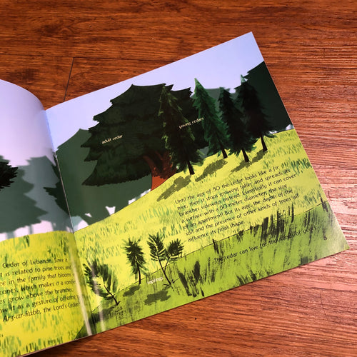 The Cedar of Lebanon Book