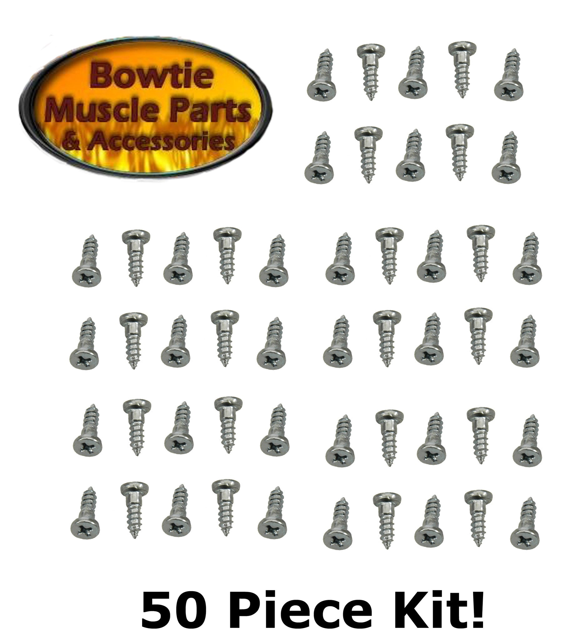 WINDOW MOLDING SCREW IN STUD SET 50 PC KIT