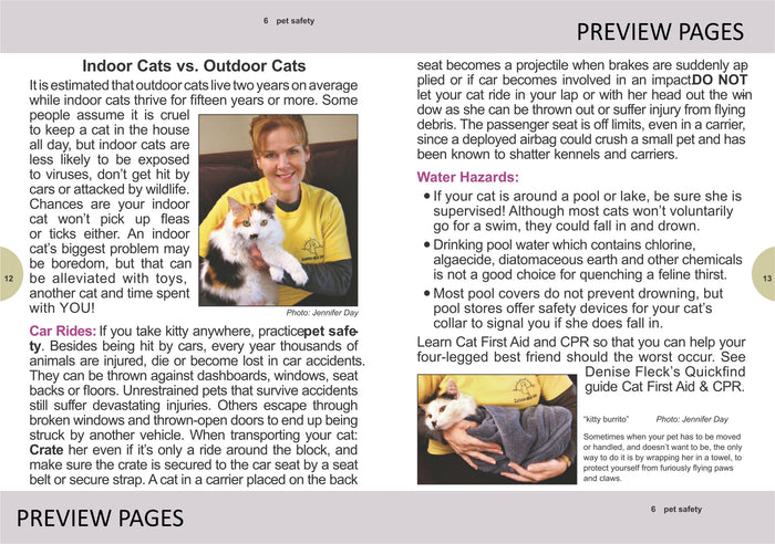 How to Take Care of Your Cat or Kitten (EPUB)