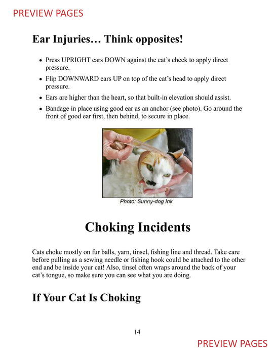 Cat First Aid & CPR