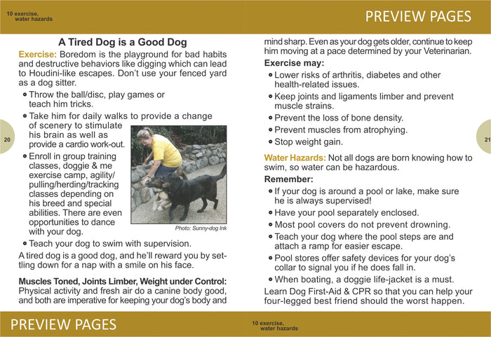 How to Take Care of Your Dog or Puppy (EPUB)