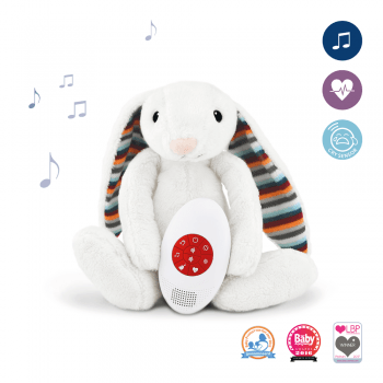 Musical Soft Toy with Heartbeat Sound - Coco & Bibi