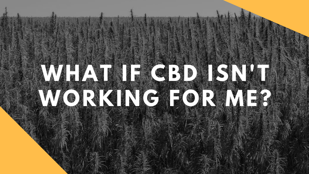 What if CBD isn't working for me? Troubleshooting Guide!!