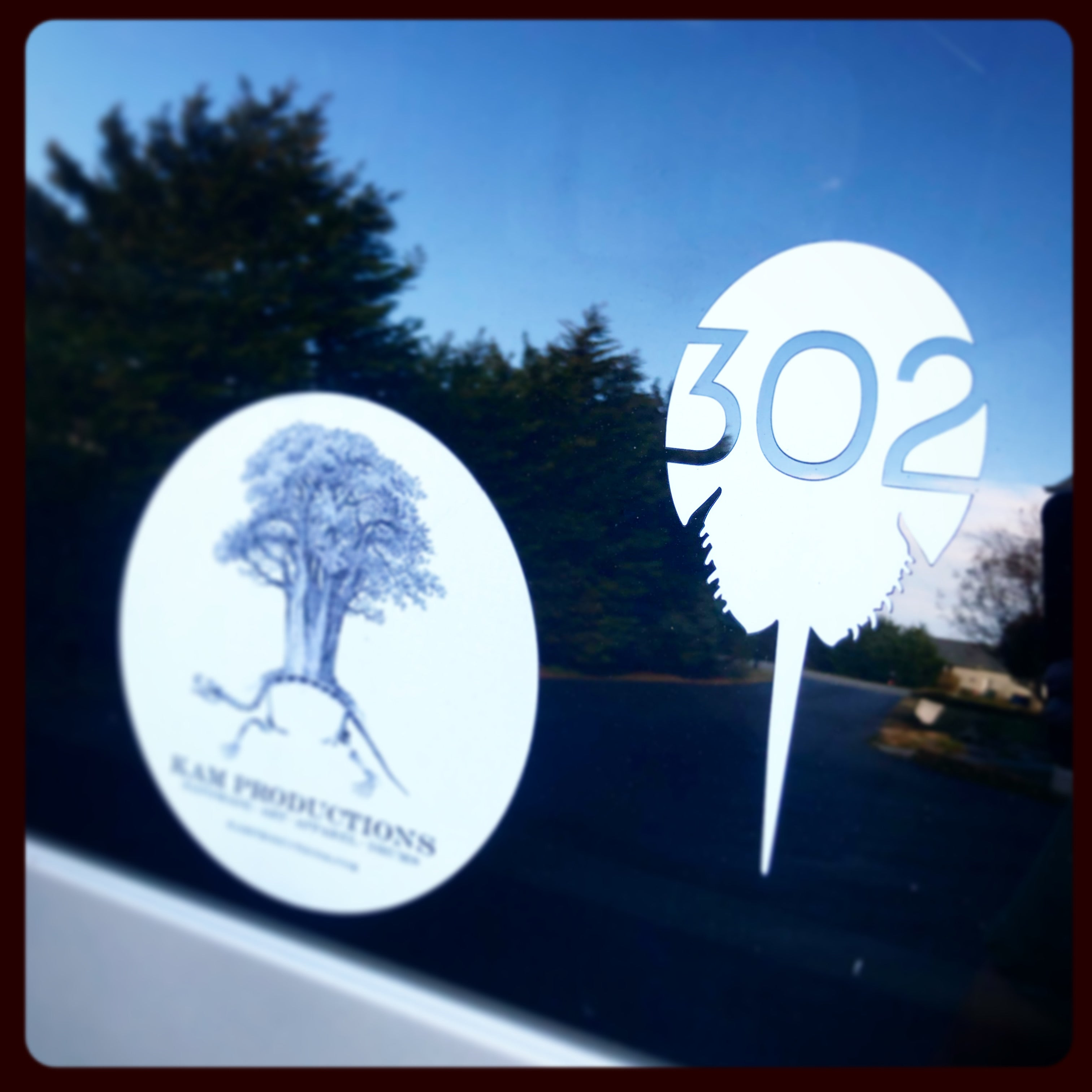 302 Large Decal