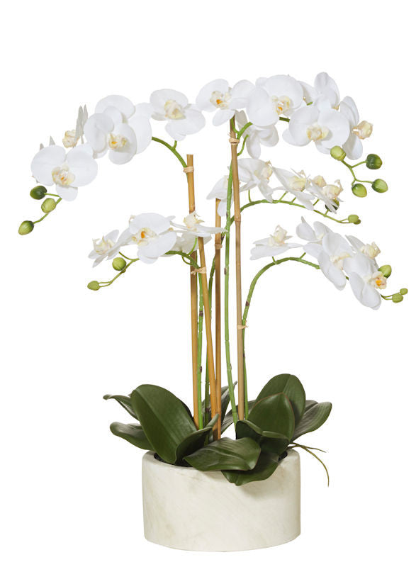 Rogue Artificial Flower Arrangement White Butterfly Orchid Stone Pot 62 cm