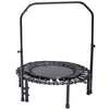 Image of SkyBound Numbus Fitness Rebounder with hand rail and carrying case
