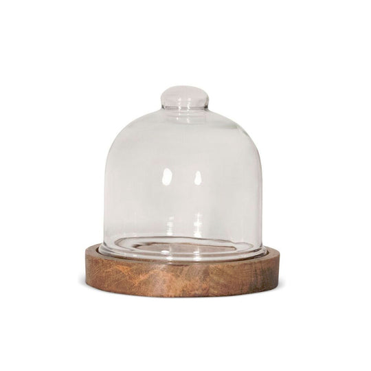 Mini Glass Dome 6.75