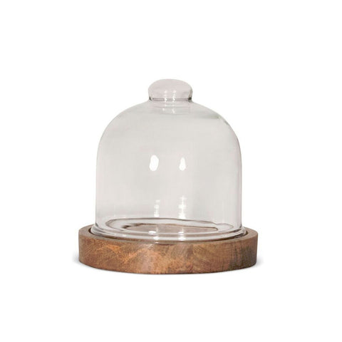 Mini Glass Dome with Wood Base