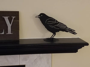 Crow, Standing
