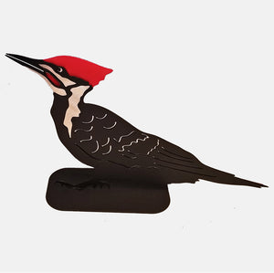 Pileated Woodpecker, Standing