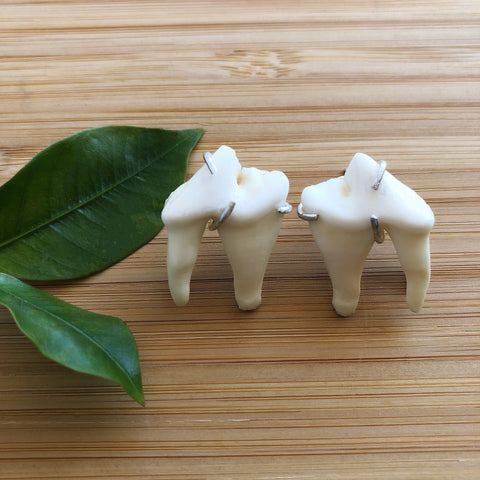 Coyote Teeth Earrings