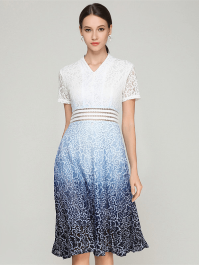 Roma Gradually Colored Floral Lace Dress
