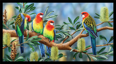 Wildlife Art - Eastern Rosellas