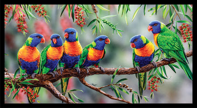 Wildlife Art - Rainbow Lorikeets
