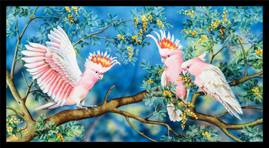 Wildlife Art - Galahs