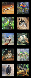 Wildlife Art V5 - Aussie Animals - DV3707