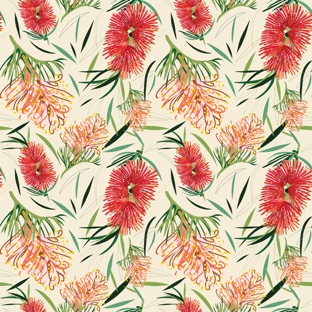 Robyn Hammond Collection - Bottlebrush on Cream