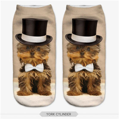 Yorkshire Terrier Socks