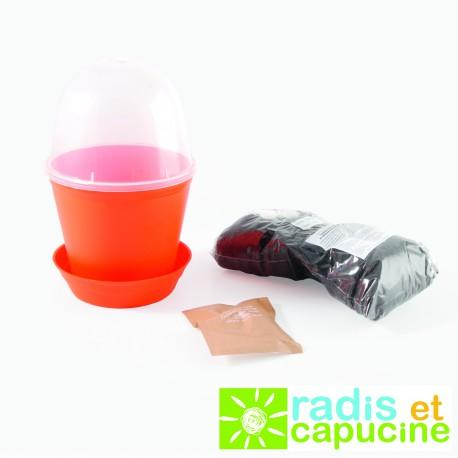Pot Cloche Capucine