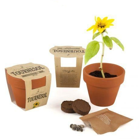 Kit de plantation Pot en terre cuite 65 mm forme simple