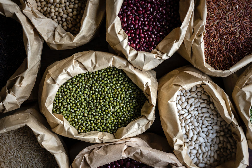 Image of beans to accompany sustainable fiber article on ZERRIN