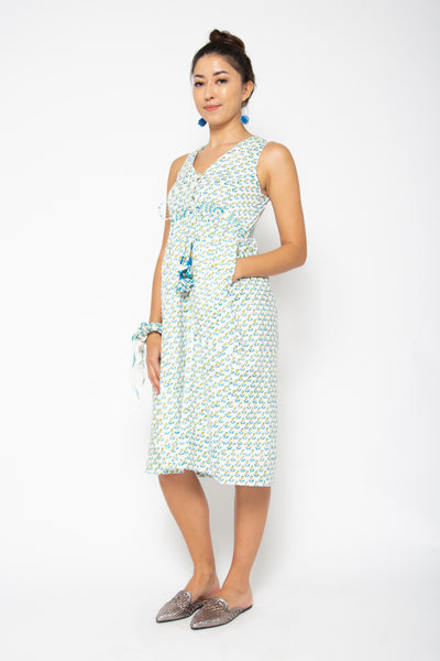 Baliza Jade Dress in Paisley Blue & Green