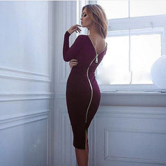 Sheath Bodycon Sexy Pencil Tight Dress Long Sleeve Party Dresses Back Full Zipper