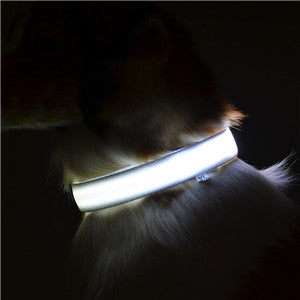 Luminous Pet Dog Collar Glow LED Dogs Flashing Light Up Nylon Collars For Animals Dog