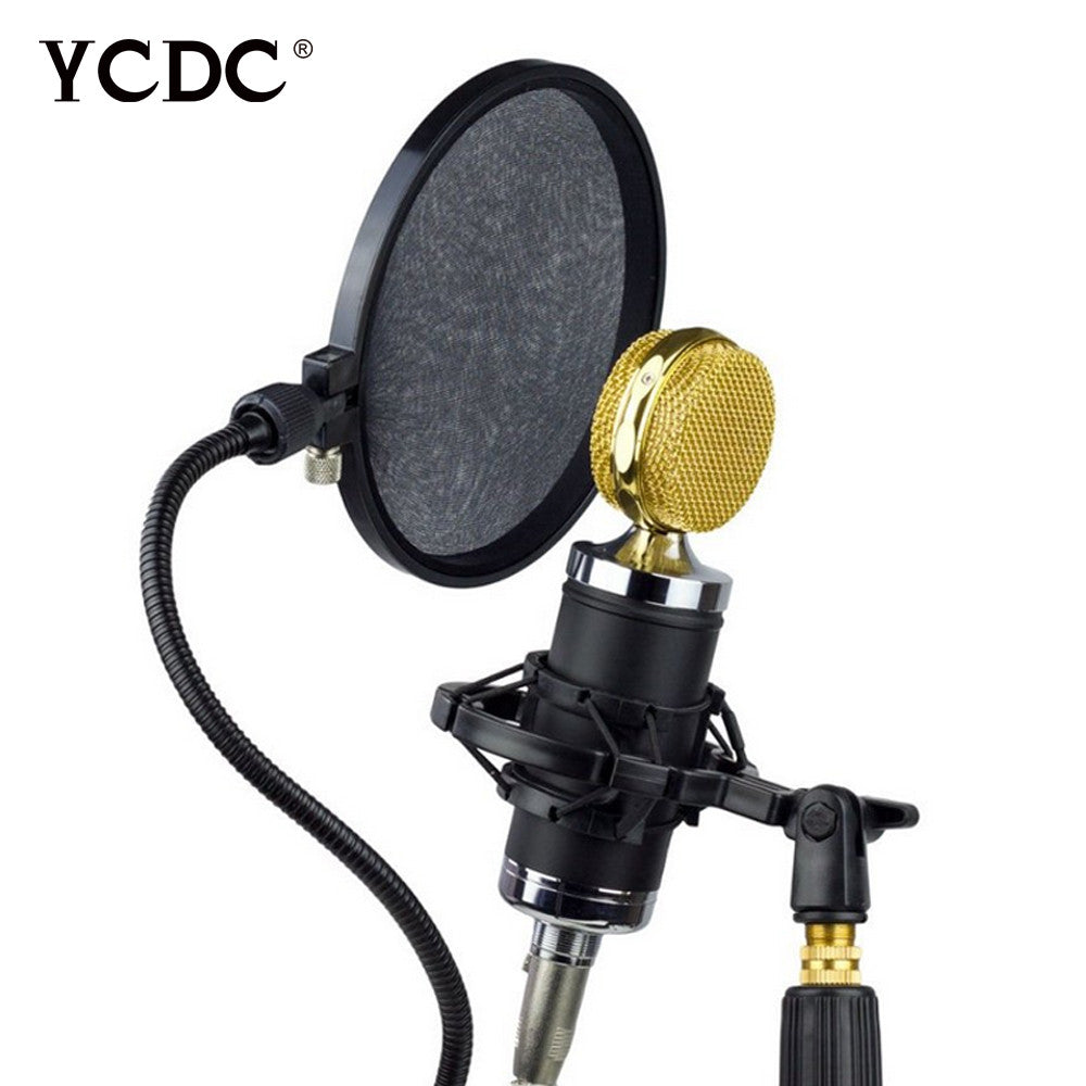 Mic Microphone Pop Filter Professional Studio Mask Shield Dual Layer EN4107