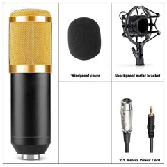 Professional Broadcasting Sound Studio Recording Microphone + Shock Mount Holder