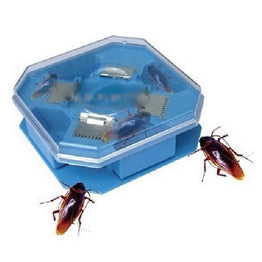 Convenient Nontoxic Insect Killer or Cockroach Catcher