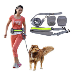 Running Belt Padded Waist With Reflective Strip + Zipper Bag + Bottle Holder for Dog/Cat
