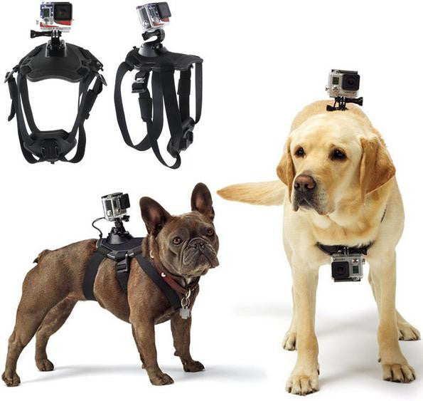 GoPro Accessories Adjustable Dog Fetch Harness Chest Strap Belt Mount