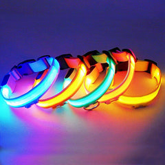 Dog collar Nylon Pet led light dog collar led flash night security products for pet dog battery
