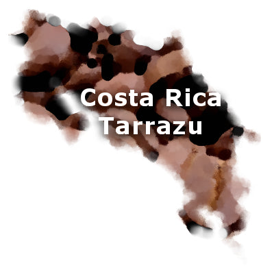 Costa Rica Fancy Tarrazu 16 oz