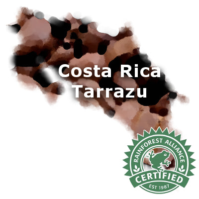 Costa Rican Tarrazu Rainforest Alliance 16 oz