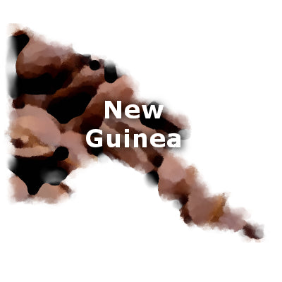 New Guinea Coffee Beans