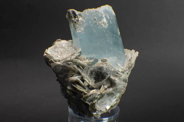 Aquamarine Crystal on Muscovite Mica Flower Matrix (Front View #2) for $795 at Mystical Earth Gallery