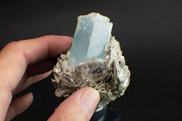 Aquamarine Crystal on Muscovite Mica Flower Matrix (Side Example) for $795 at Mystical Earth Gallery
