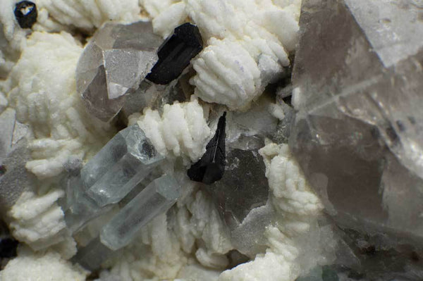Aquamarine Crystals with Black Tourmaline, Smoky Quartz and Green Fluorite on Albite Matrix (Close Up View for Aquamarines) for $449.99 at Mystical Earth Gallery