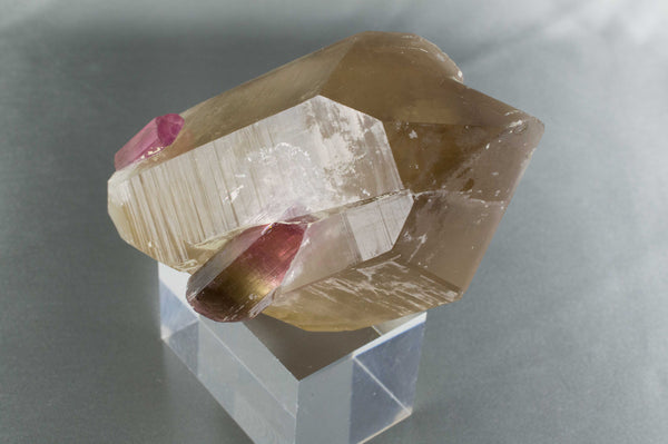 RARE Pink/Green Tourmalines on Smoky Quartz Matrix, Himalaya Mine, California; $5,750 @ Mystical Earth Gallery