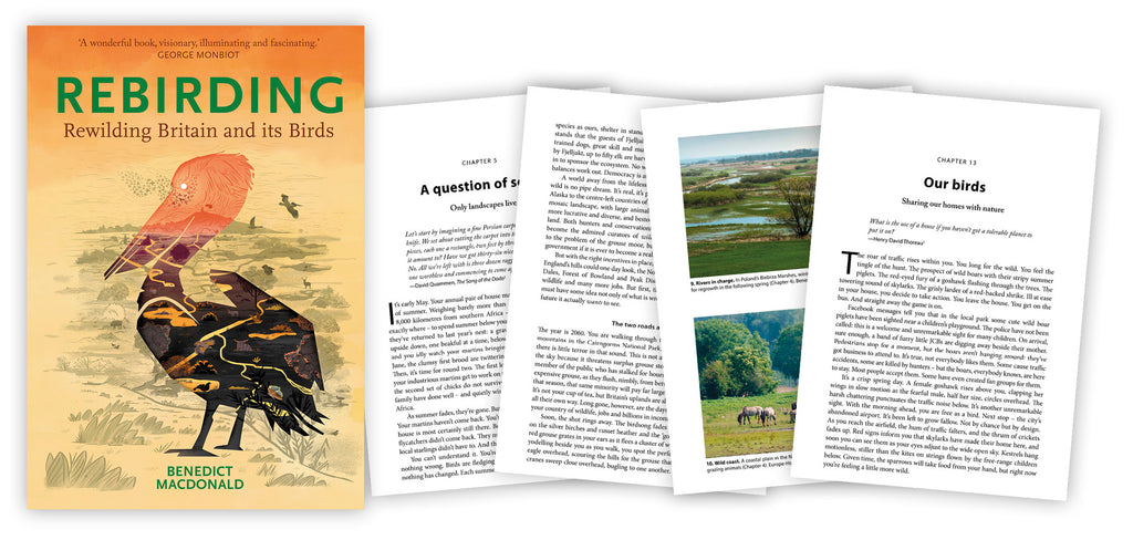 Just published: Rebirding - Rewilding Britain and its Birds by Benedict Macdonald