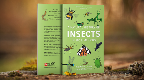 In Conversation with Richard A. Jones, author of A Natural History of Insects in 100 Limericks