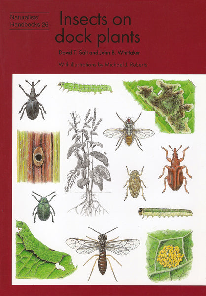 Insects on dock plants - Pelagic Publishing