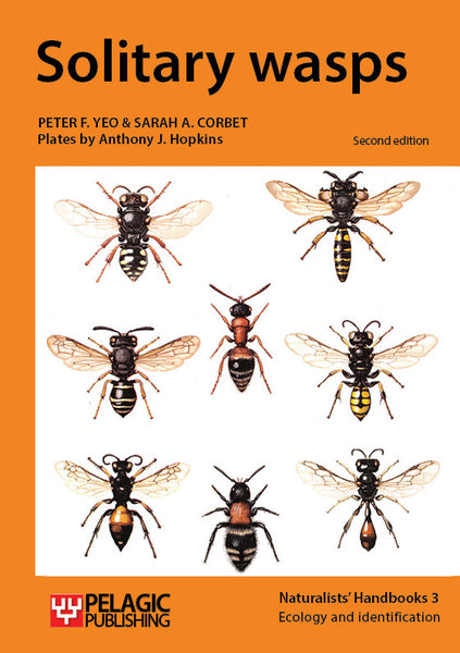 Solitary wasps - Pelagic Publishing