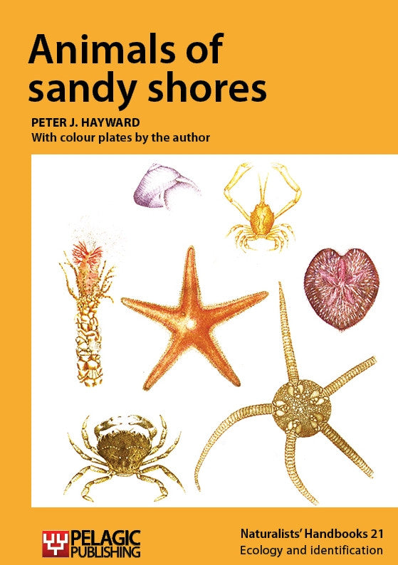 Animals of sandy shores - Pelagic Publishing