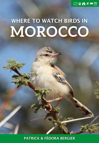 Where to Watch Birds in Morocco - Pelagic Publishing