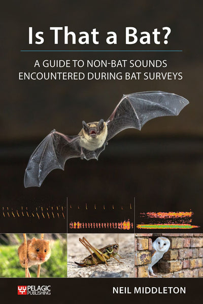 Is That a Bat? - Pelagic Publishing