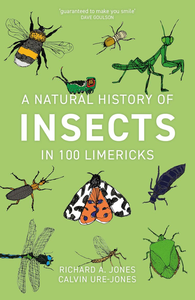 A Natural History of Insects in 100 Limericks