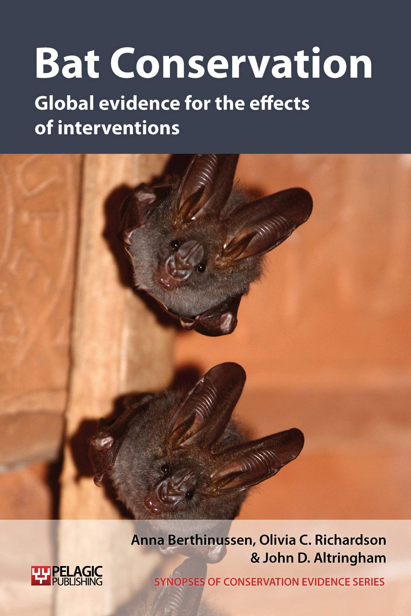 Bat Conservation - Pelagic Publishing